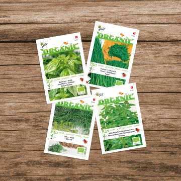 Mélange d'herbes aromatiques Buzzy® Seed Organic
