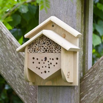 Insect House