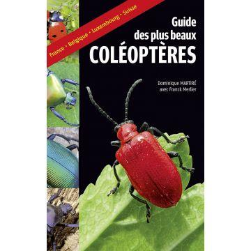 Guide des plus beaux coléoptères