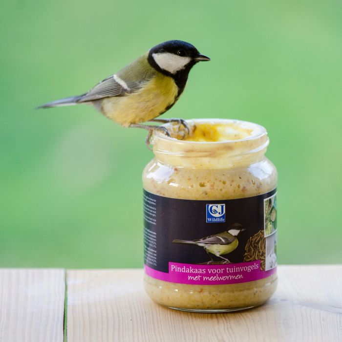 Beurre de cacahuètes pour oiseaux de jardin - avec vers de farine