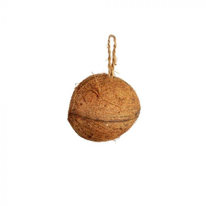 Noix de coco Hi energy avec beurre de cacahuètes