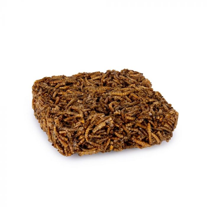 Bloc de vers de farine séchés 90 grammes