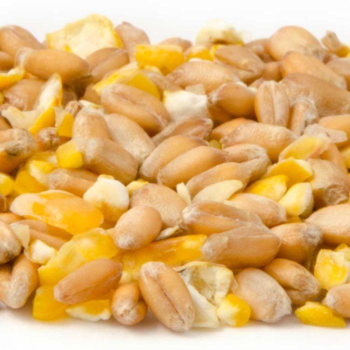 Mixed Corn (2.5kg)