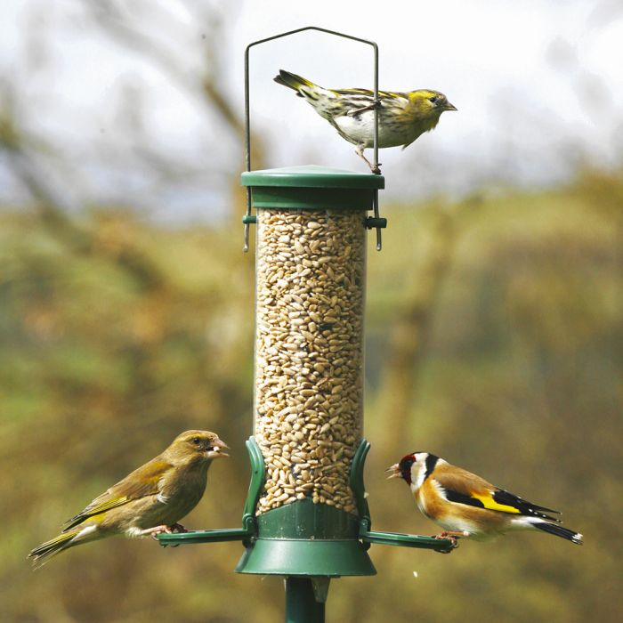 Green Challenger 2 port Seed Feeder