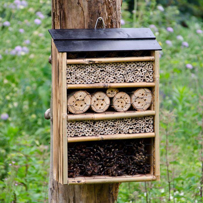 Maisonnette pour insectes