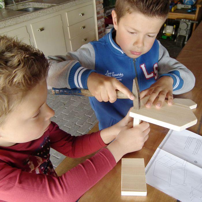 Kit de construction pour nichoir Nell