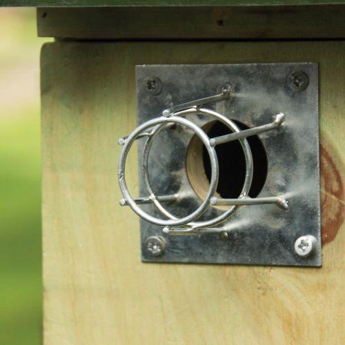 Protection en métal  Ø 32 mm pour nichoirs