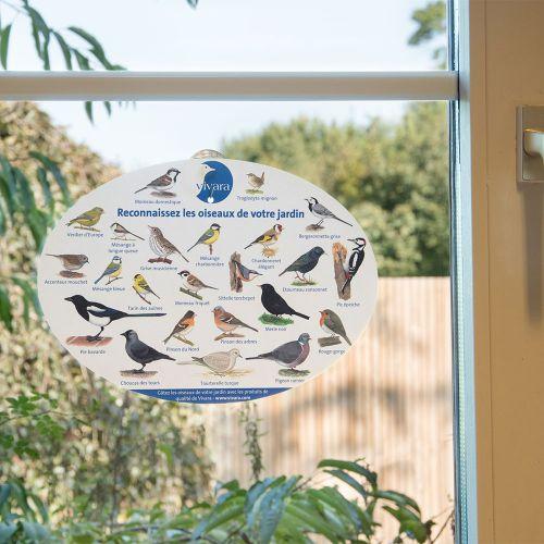 Poster pour fenêtre oiseaux du jardin