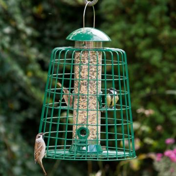 Green Adventurer 4 Port Seed Feeder with Guardian