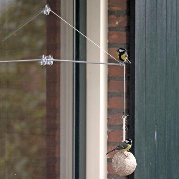 Coffret BirdSwing XXL