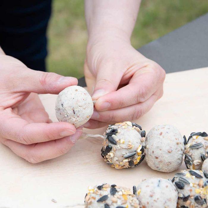 Pâte à modeler au beurre de cacahuètes pour oiseaux