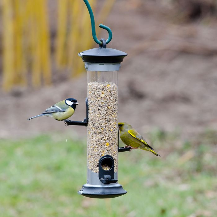 Apollo 3 port Seed Feeder