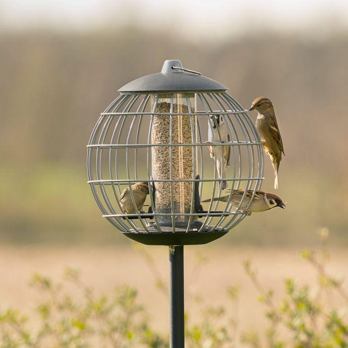 Silo et cage de protection pour petits oiseaux Athena