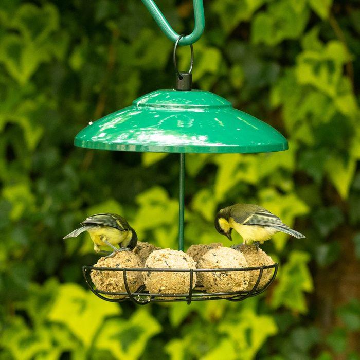 Carrousel pour boules de graisse Bunbury - Vert