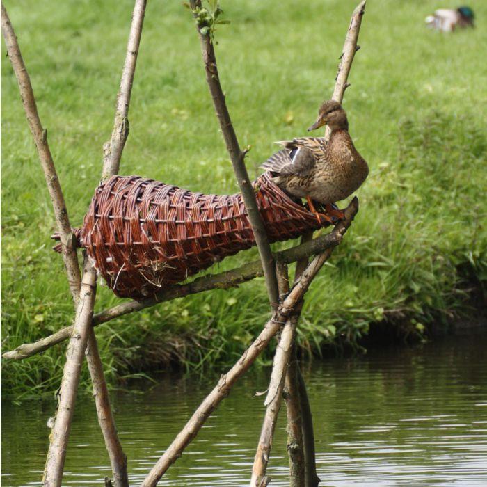 Panier long pour canards