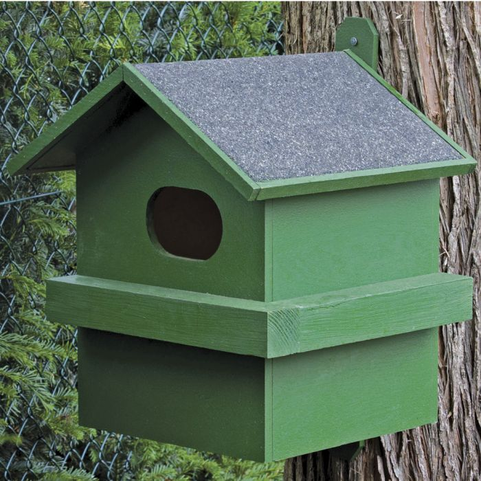 Red Squirrel House