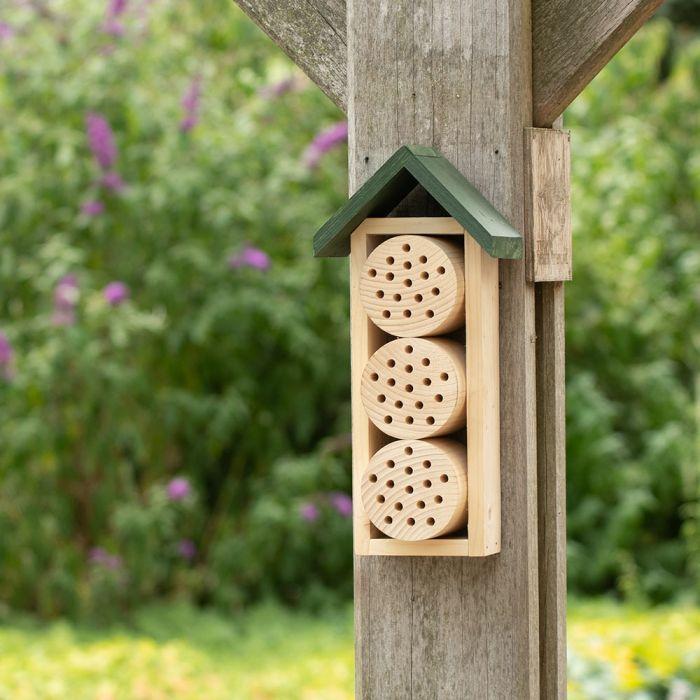 Hôtel à abeilles Ustica