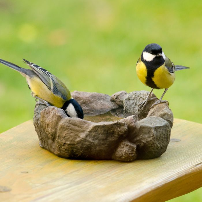 Levico Bird Bath
