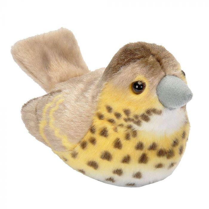 Peluches d'oiseaux avec chant – Grive musicienne
