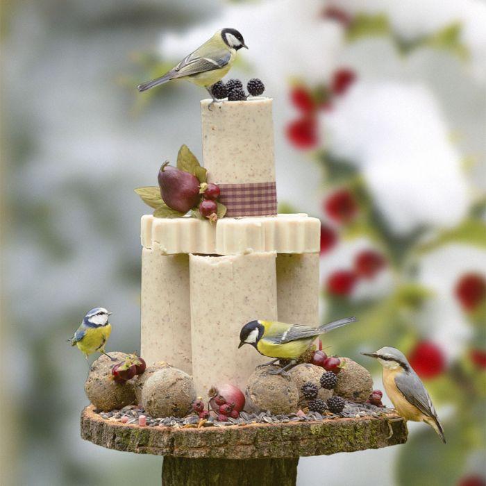 Paquet gâteau pour oiseaux