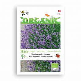 Buzzy® Organic Lavande Vraie BIO